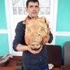 nicolai, 29, г.Рышканы