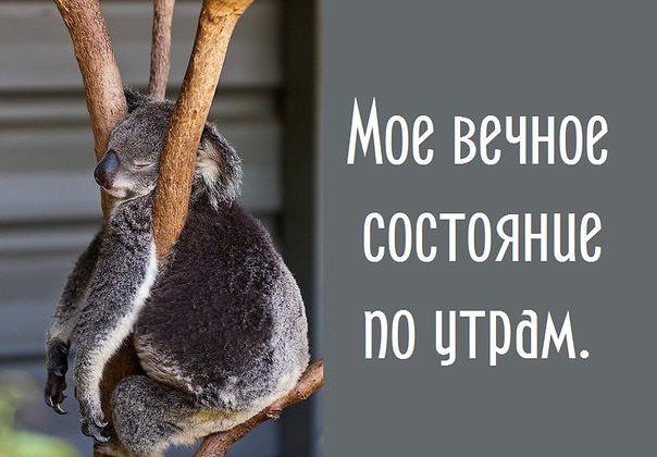 http://f1.mylove.ru/8KGhk1aEtb.jpg