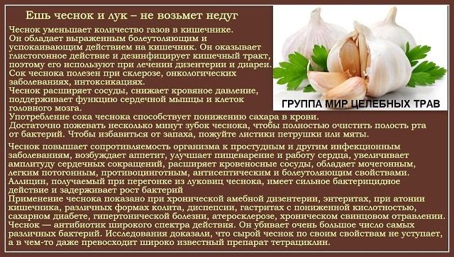 чеснок и праффилактика здоровья