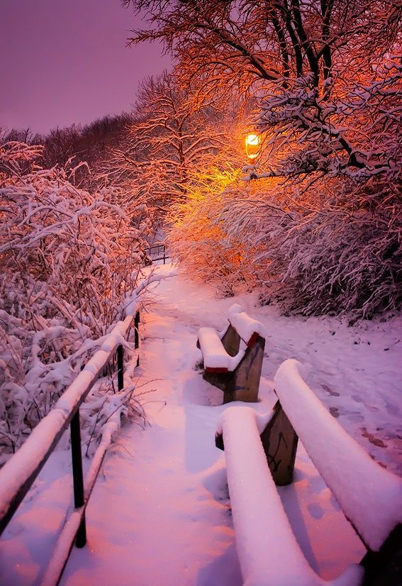 beauty of winter essay In india, we count six seasons in a year autumn is one of them it is composed of september and october it comes after the rainy season related articles: essay on.