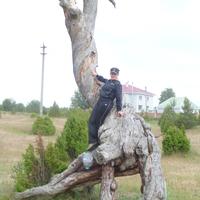 МАРГОША, 37 лет, Овен, Sesto San Giovanni