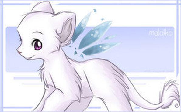 белые котята аниме картинки