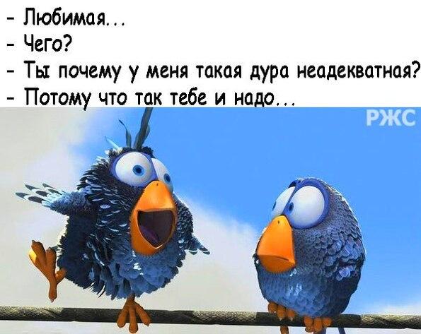 http://f1.mylove.ru/J_20q6htoK1EXJ2cj.jpg
