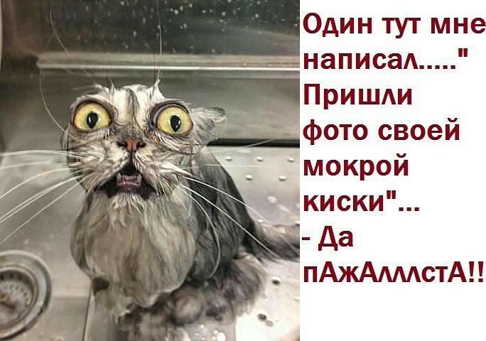 onlayn-porno-zrelaya-veb-skritaya