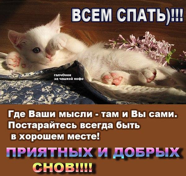 http://f1.mylove.ru/Lu2xu12eDF.jpg