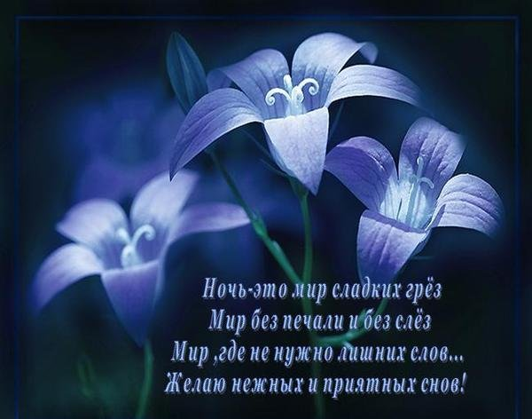 Доброго сна девушке
