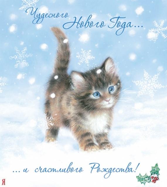 Котенок поздравляет с новым годом