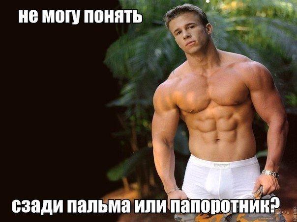 kakoy-muzhchina-samiy-seksualniy