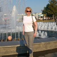 Светлана, 43 года, Козерог, Тольятти