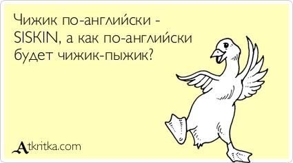Грецкий орех. рецепты блюд