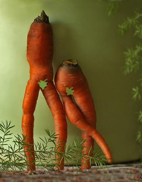 morkovka-porno-sayt