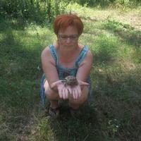 Наталья, 43 года, Рак, Кемля