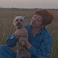 Татьяна, 53 года, Близнецы, Омск