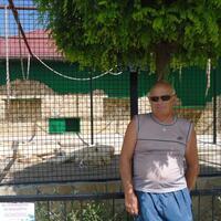 Виктор, 63 года, Водолей, Саки
