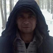 Кот 37 Новосибирск