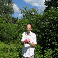 Юрий, 47 лет, Скорпион, Москва