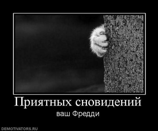 https://f1.mylove.ru/4Z1xTD2XBc.jpg