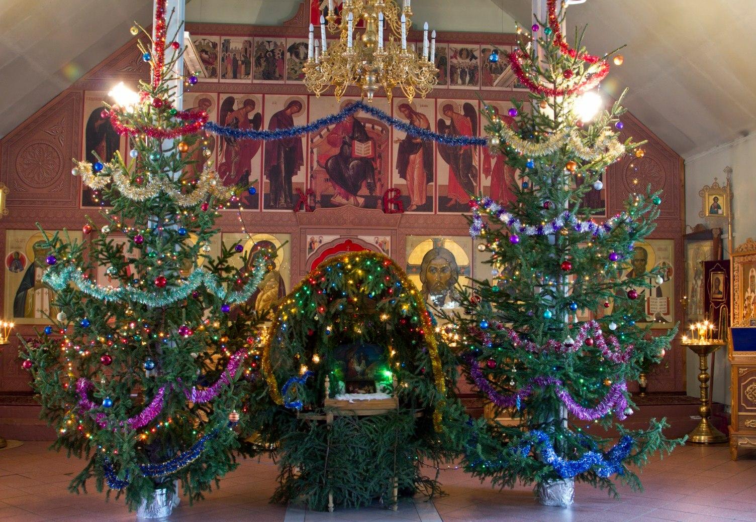 Рождественская елка картинки в православной, днем рождения