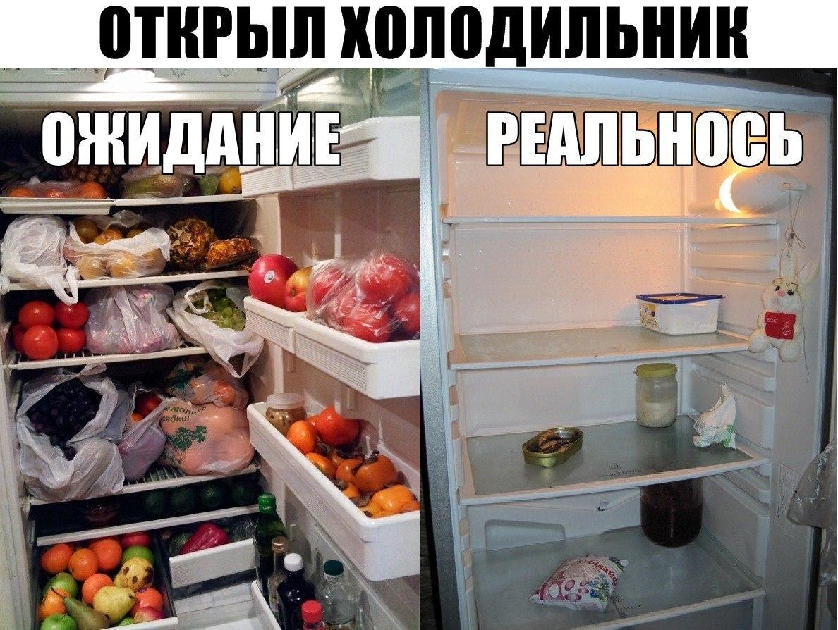 норвежцы, пустой холодильник демотиваторы понятным языком, уши
