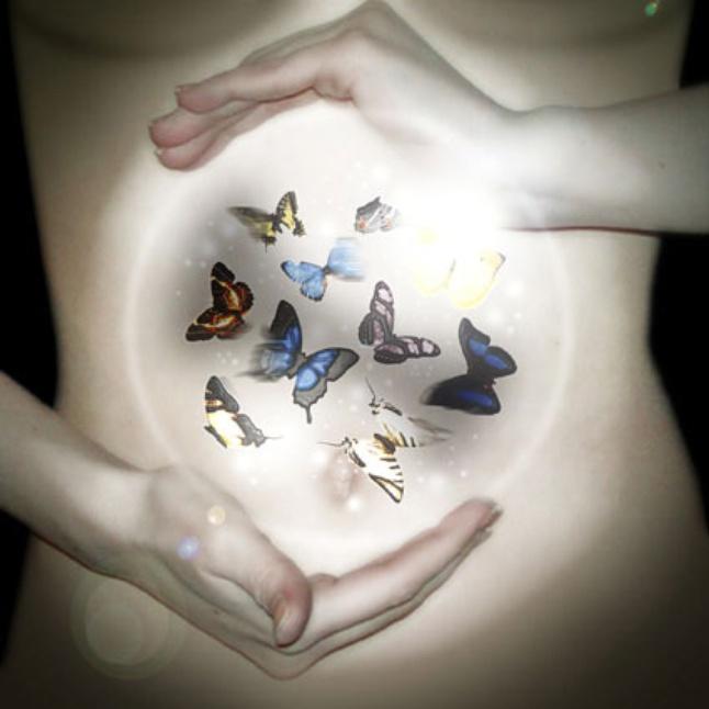 Февраля прикольные, бабочки в животе картинки