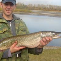 Nik, 41 год, Рыбы, Новокузнецк