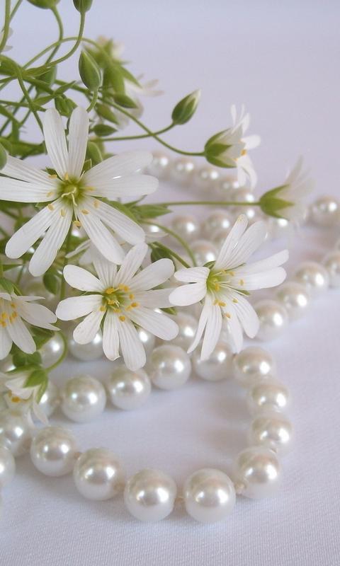 картинки на телефон жемчуг и цветы типографии одну