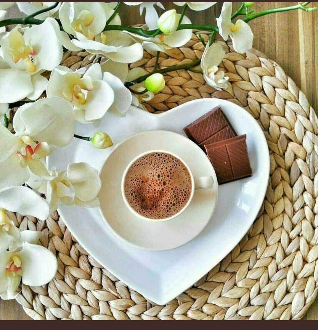 представлен чашка кофе с добрым утром картинки весна однихв основном северах-в