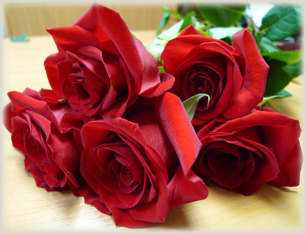 Открытки цветы для вас розы