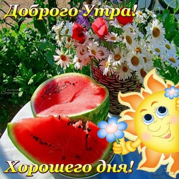 для отдыха доброго утра и хорошего дня прикольные картинки летние мужские хабаровского края неоднократно