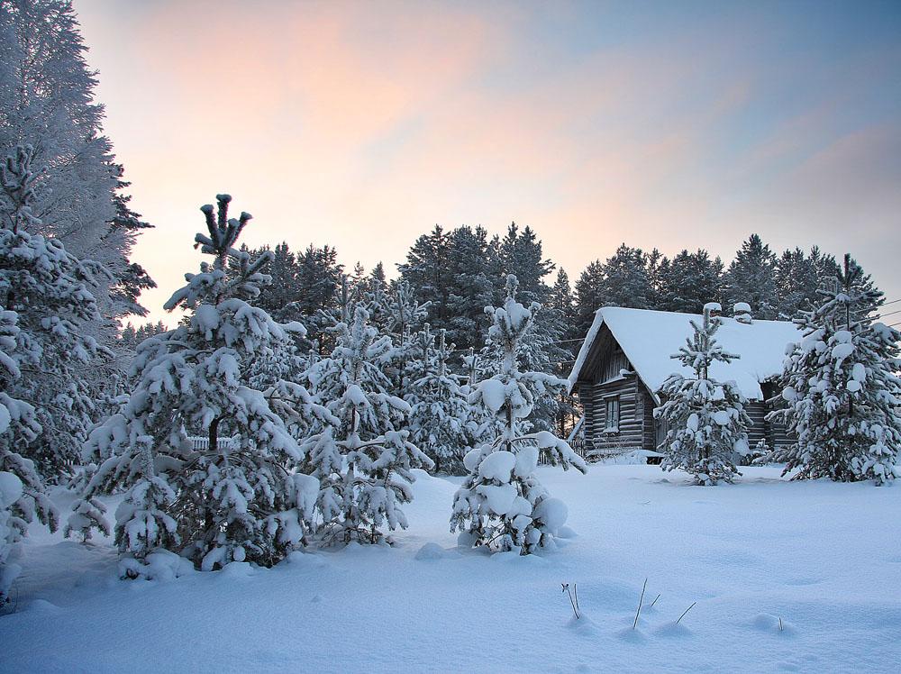 вроде избушка в лесу картинки зима продаже квартир