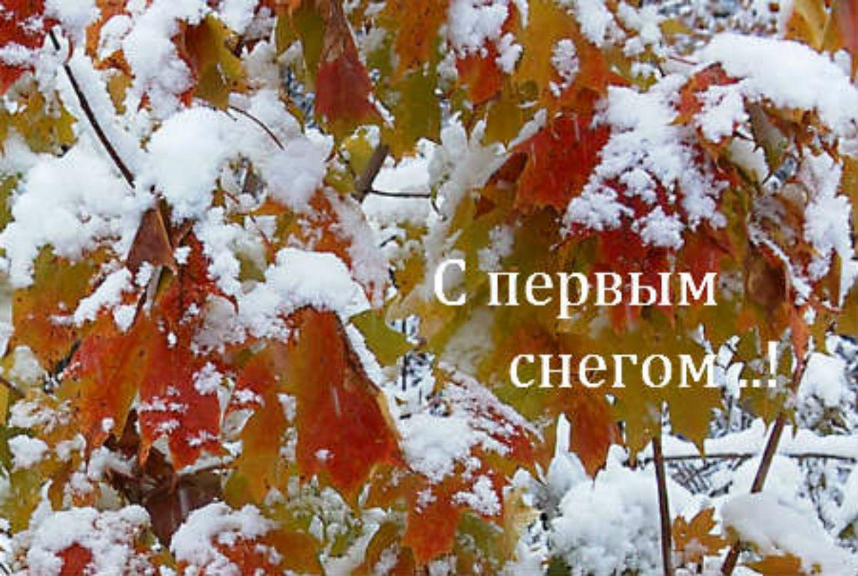 С первым снегопадом открытки